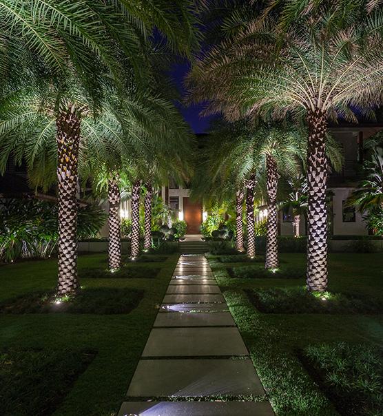 re pierrefonds pini landscaping landscape outdoor p lighting